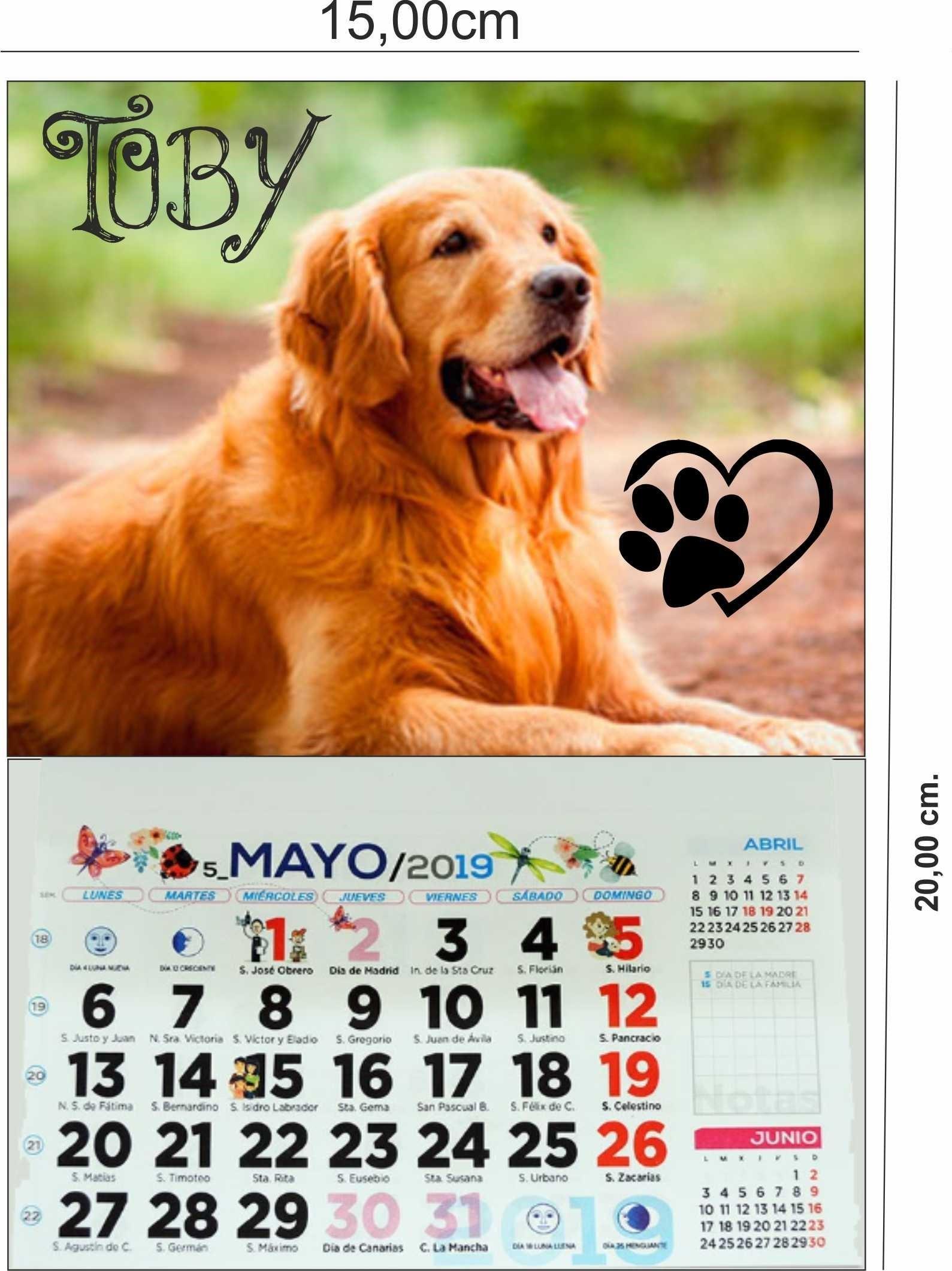 Calendario De 2019 Completo Mejores Y Más Novedosos Calendario 2019 Mascotas Con Iman