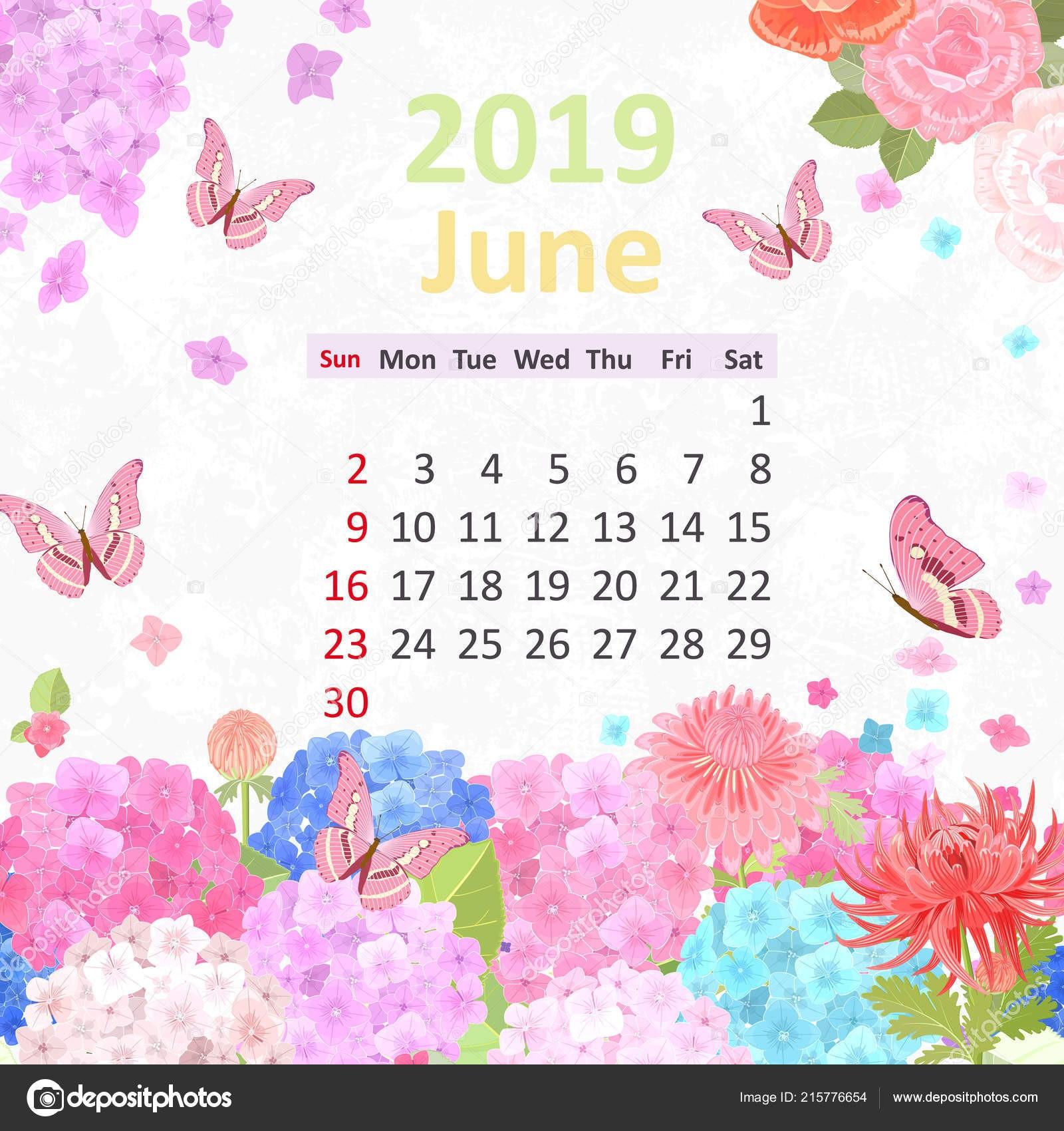 Calendario de junio de 2019 precioso con flores y mariposas — Vector de Oksana