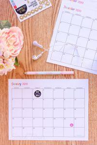 Daily Calendar Planner 2019 Actual Custom Editable Free Printable 2019 Calendars