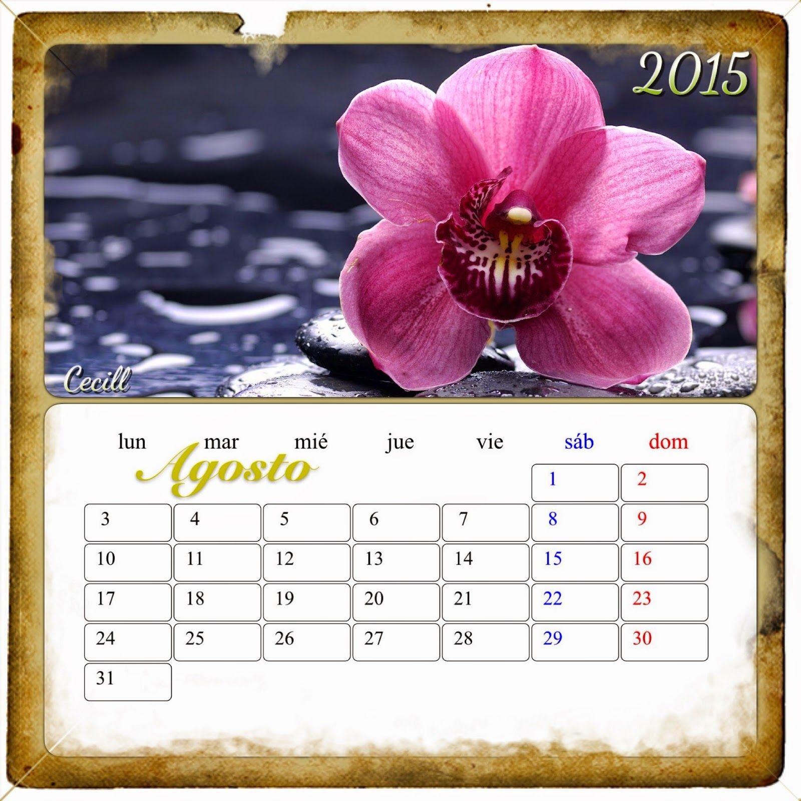 Imágenes de cecill calendario de flores ❤imágenes 1600x1600 Calendario 2015 flores