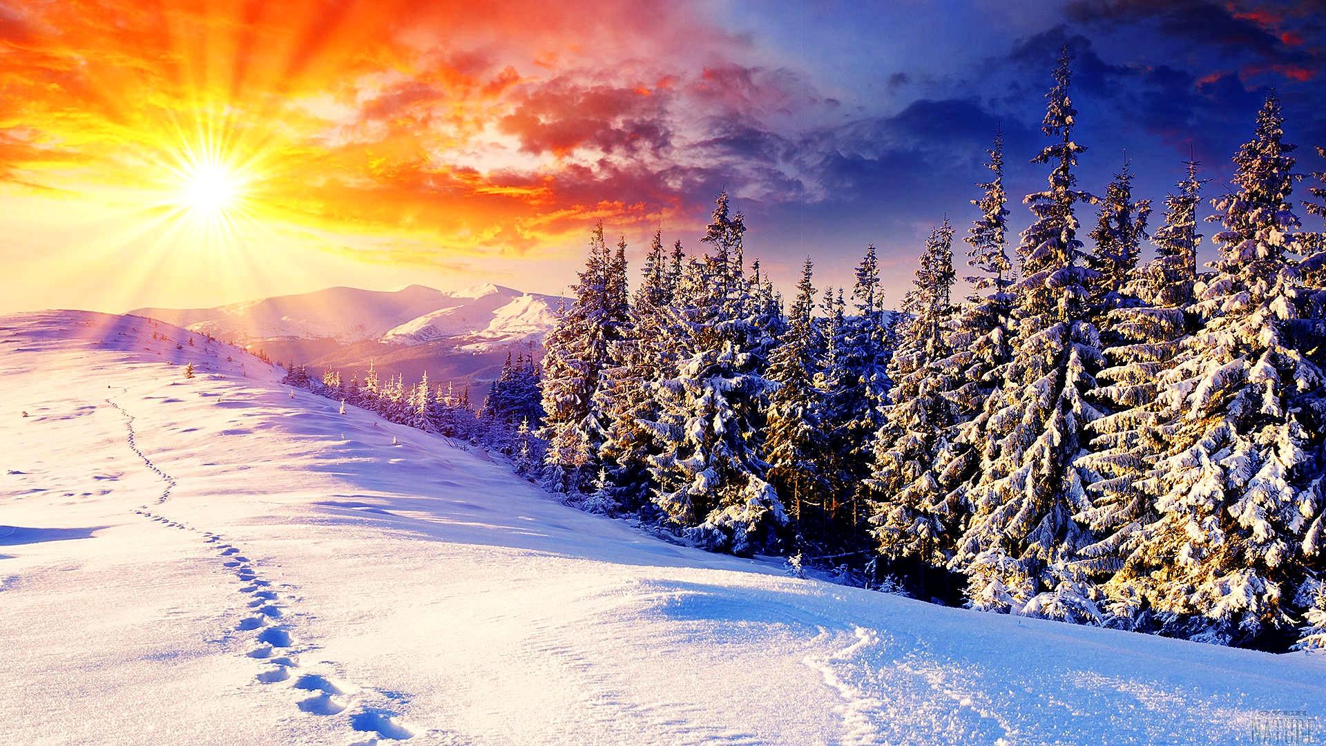 Sfondi Desktop Natura invernale