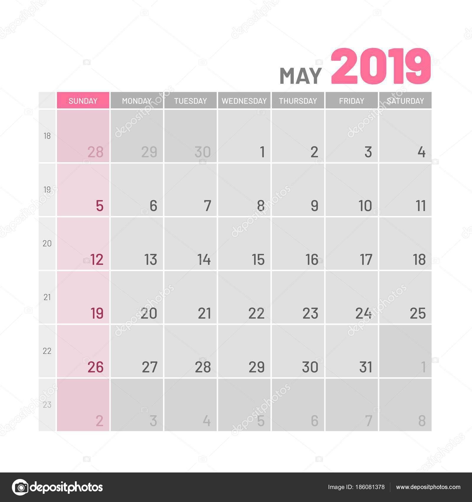 Praktické světlé Plánovač 2019 mohou byt Užitečn½ kalendář pro každ½ den poznámek Vektorové ilustrace — Vektor od nastya mal