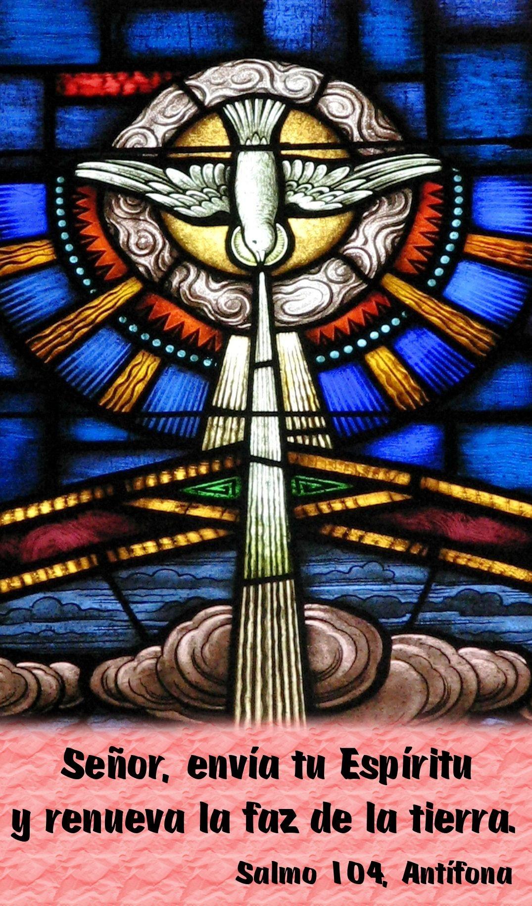 Se±or enva tu Espritu y renueva la faz de la tierra Salmo 104
