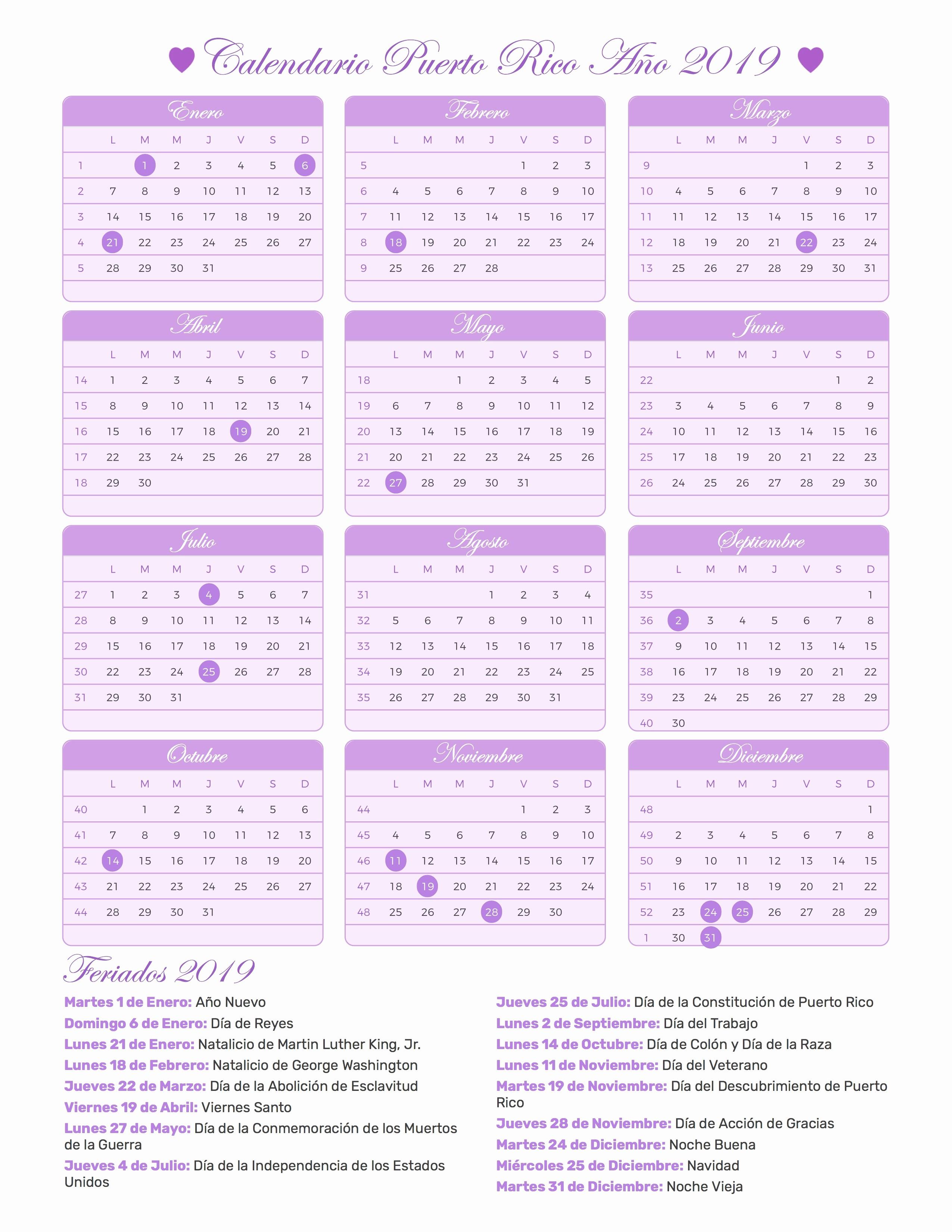 Fetrib Calendario 2019 Calendario 2019