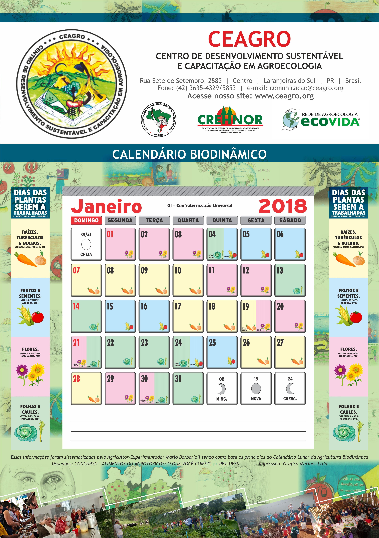 calendariofevereiro2017 namoradacriativa 01