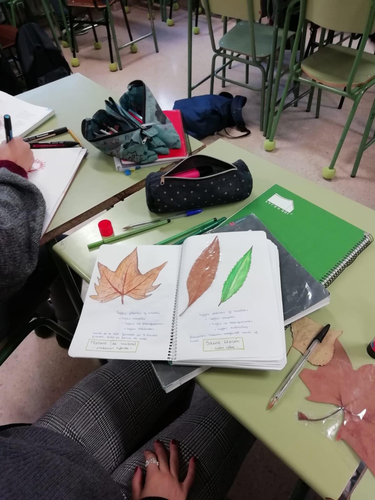 Calendario Escolar Bilbao 2019 Más Recientes Biologa 1º Bach 18 19 Of Calendario Escolar Bilbao 2019 Más Actual El Mundo 23 03 2018
