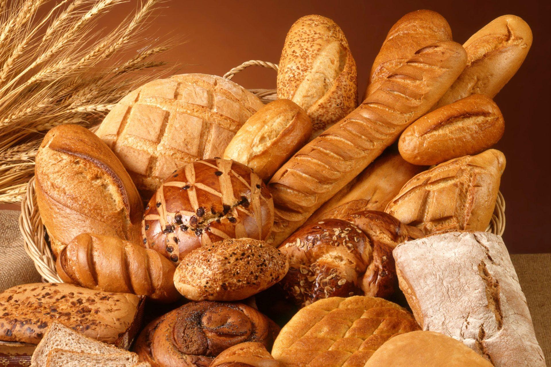 panaderia artesanal Buscar con Google