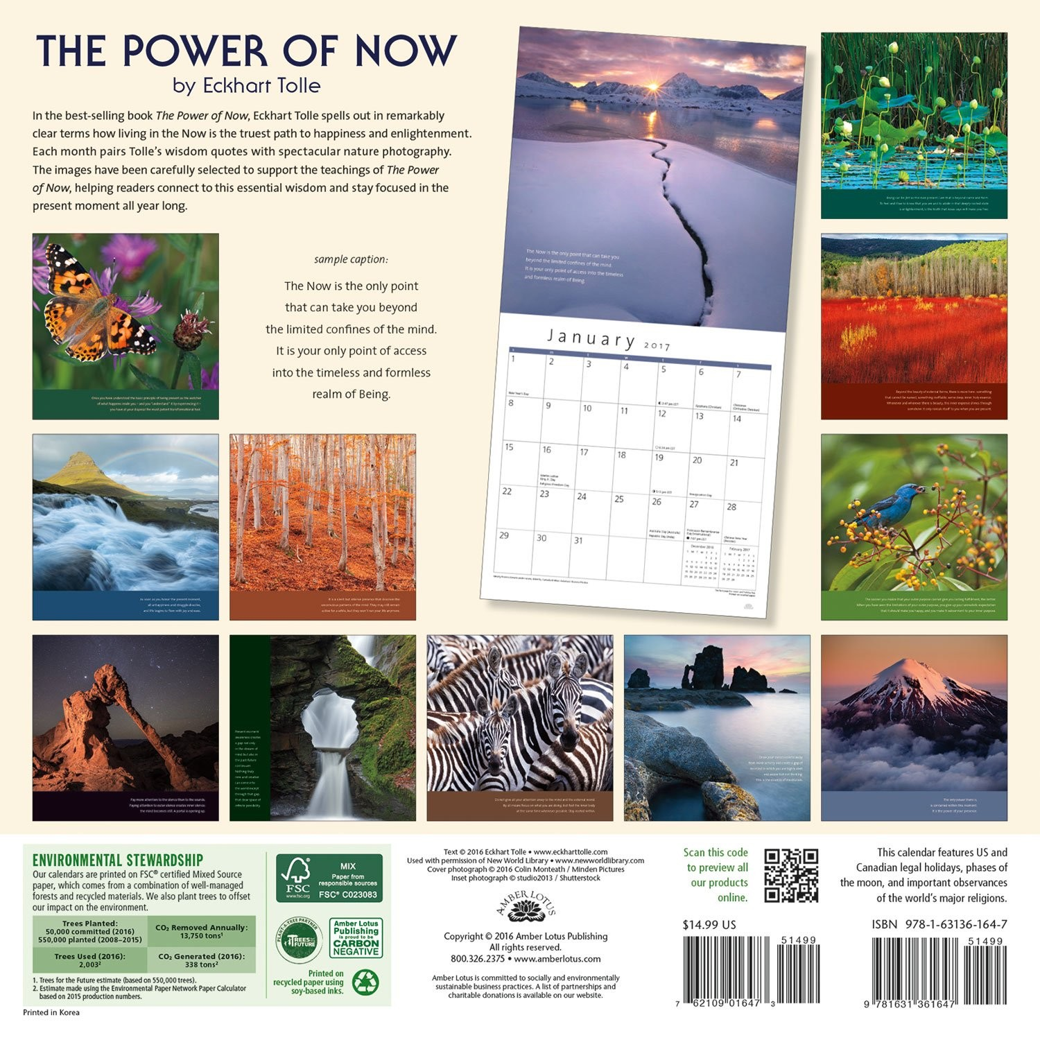 the power of now 2017 wall calendar a year of inspirational quotes