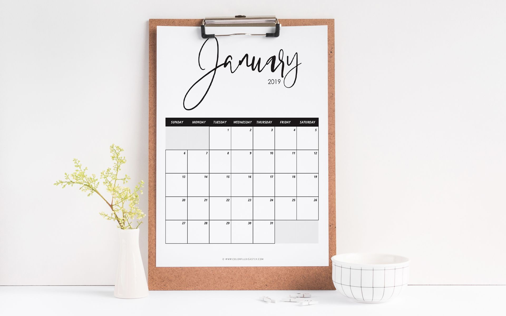 A January 2019 calendar with a plant and bowl