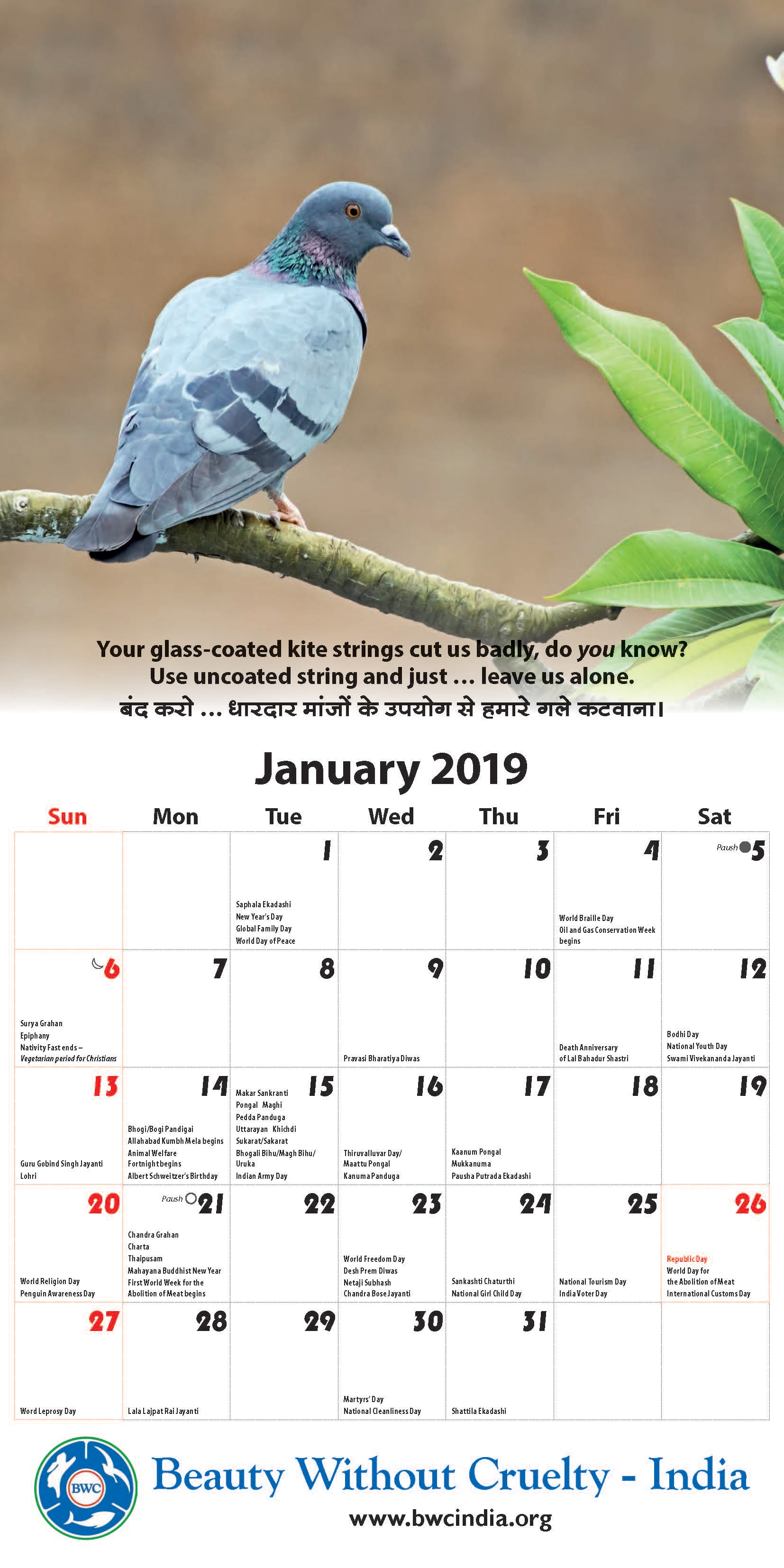 Legislation · Current Month Calendar