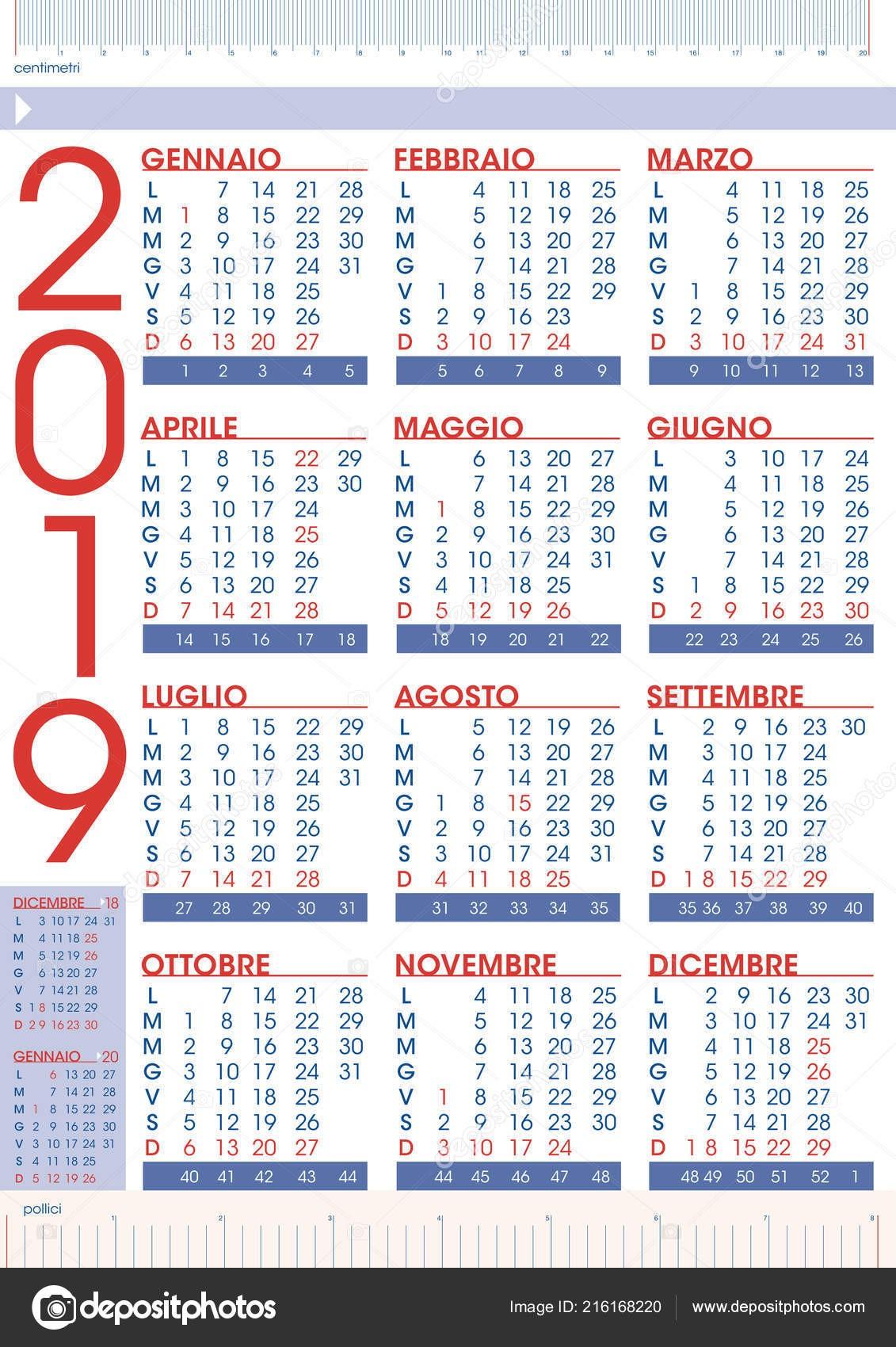 Obchodn pravidla 2019 kalendář v italském jazyce státn svátky a počet t½dnů — Vektor od graphicjet
