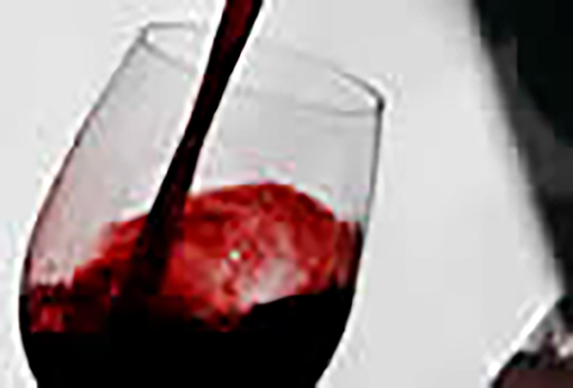 Diario del vino Un recorrido por los mejores caldos de la provincia