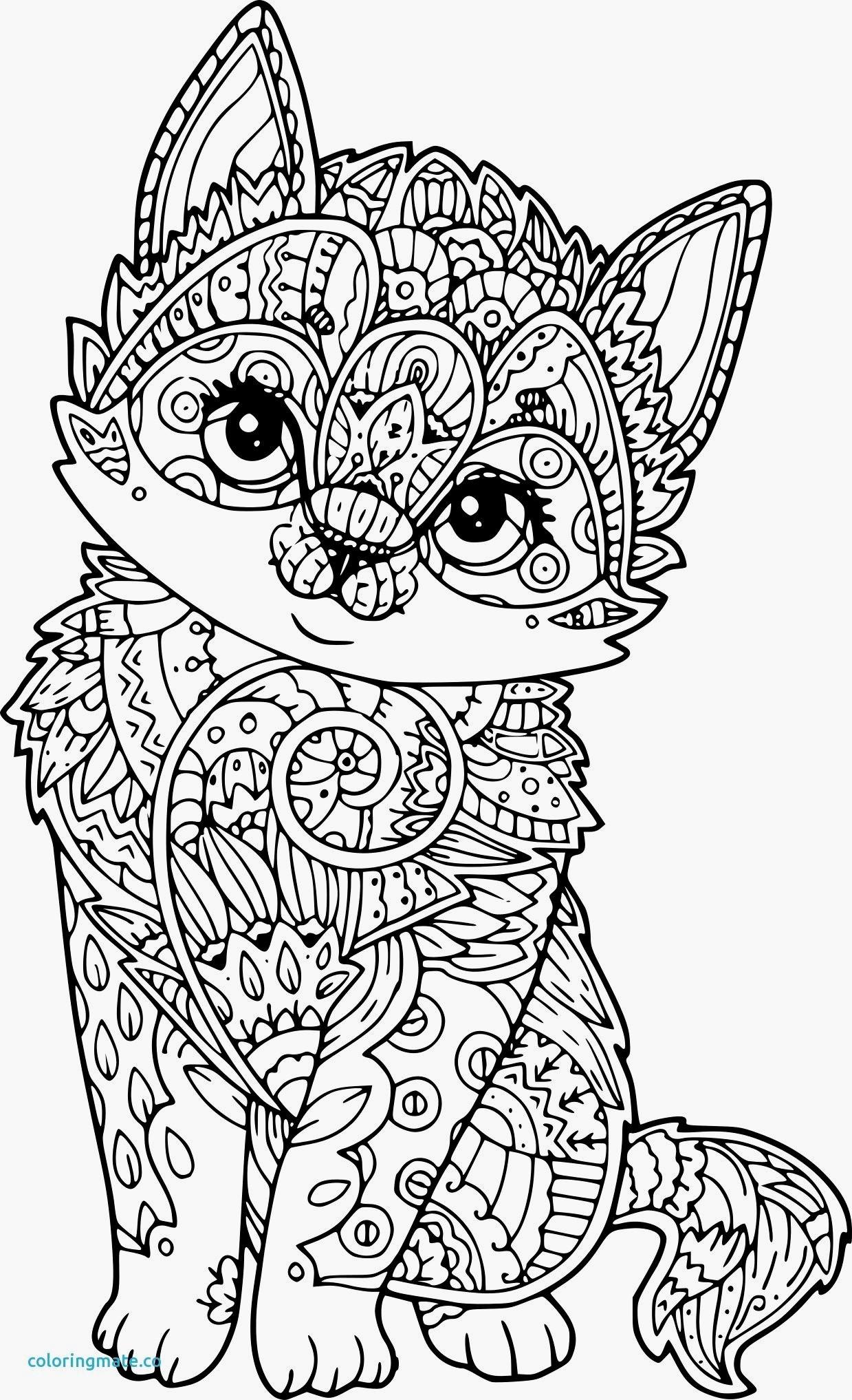 coloriage de chat a imprimer gratuit of image de chaton a imprimer interieur coloriage a imprimer gratuit chat