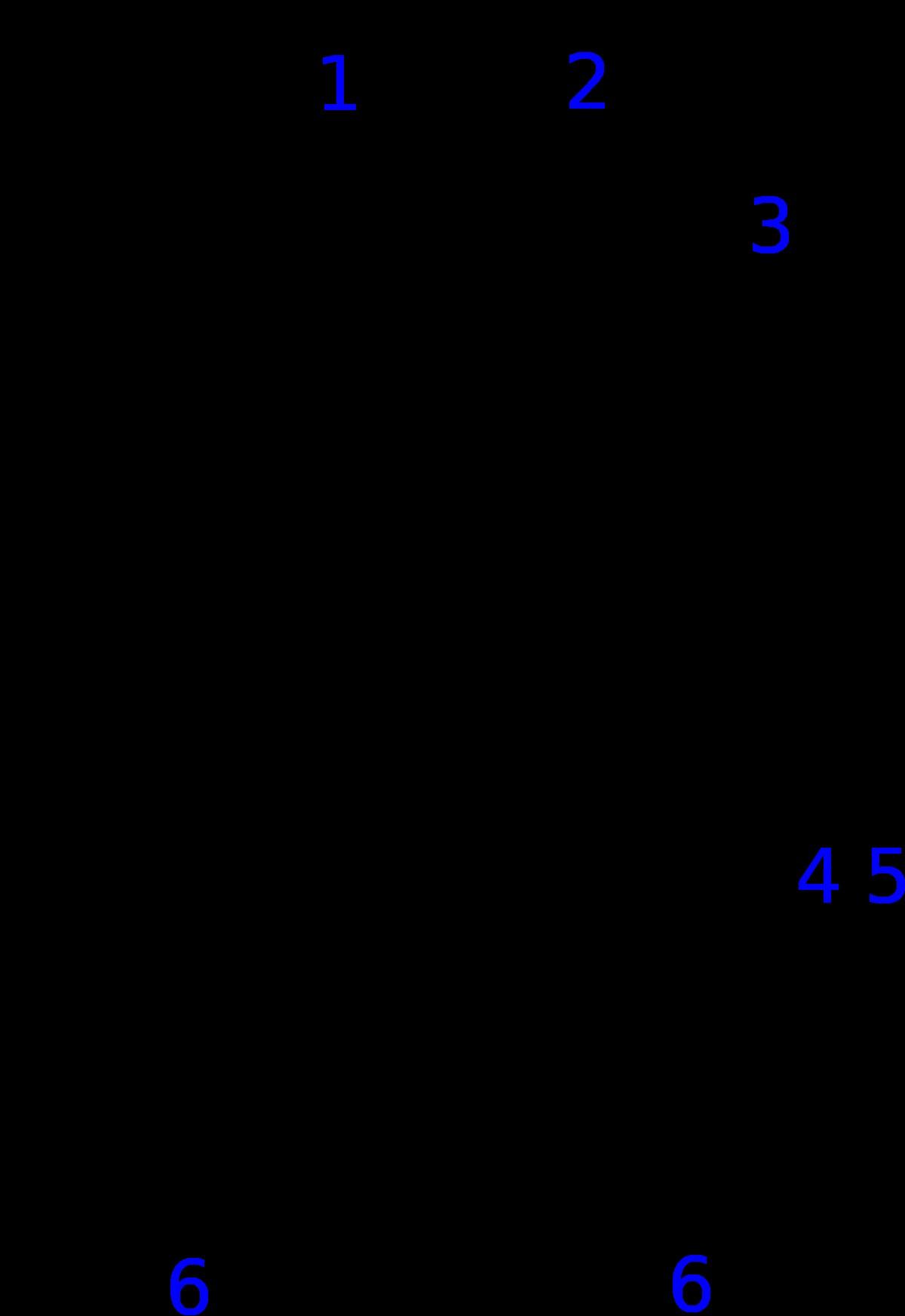 1200px Calorimeterg