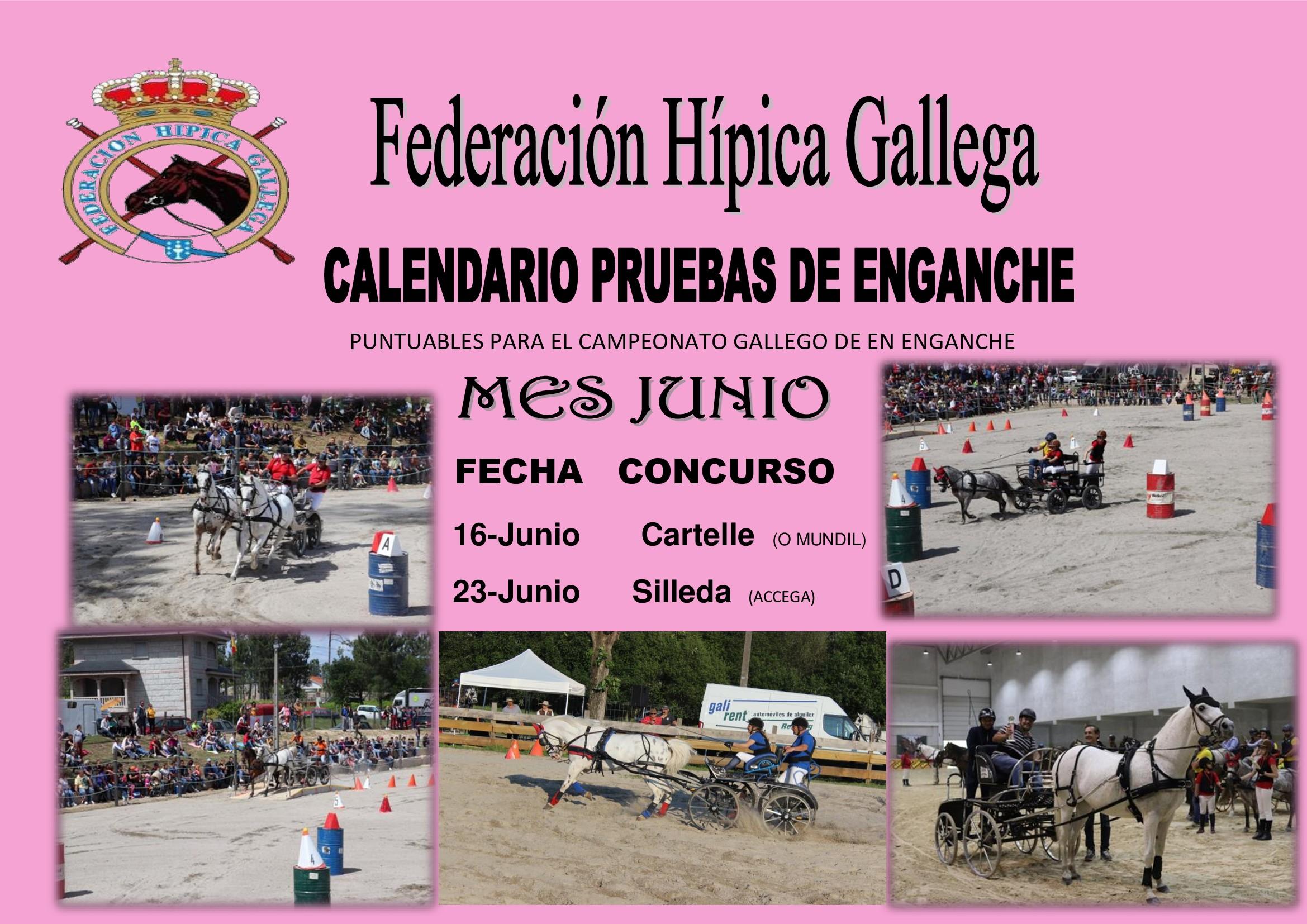 Calendario Laboral 2019 Nigran Más Recientes Federacion Hipica Gallega Calendario Of Calendario Laboral 2019 Nigran Recientes Txingudiko Inguru Fisikoaren Azterketa Estudio Del Medio