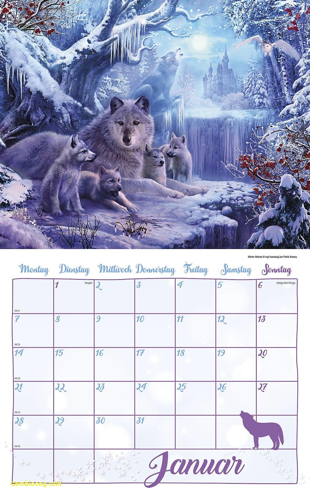fantasy calender 2019 new fantasy kalender set 2019 8tlg kalender bei weltbild of fantasy calender 2019