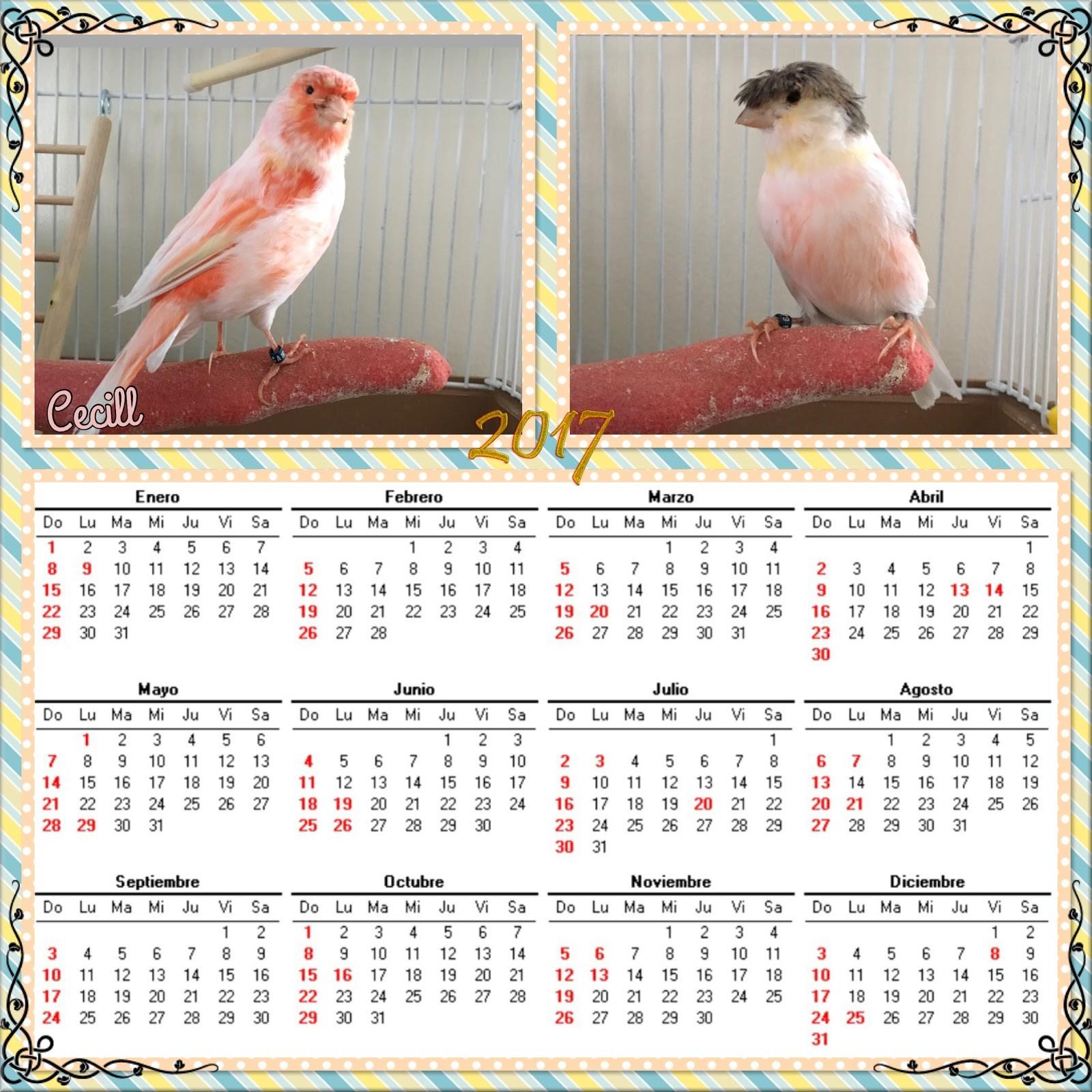 imagenes de calendarios 2017 para