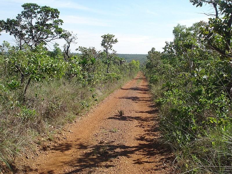 Reserva Ecológica do IBGE