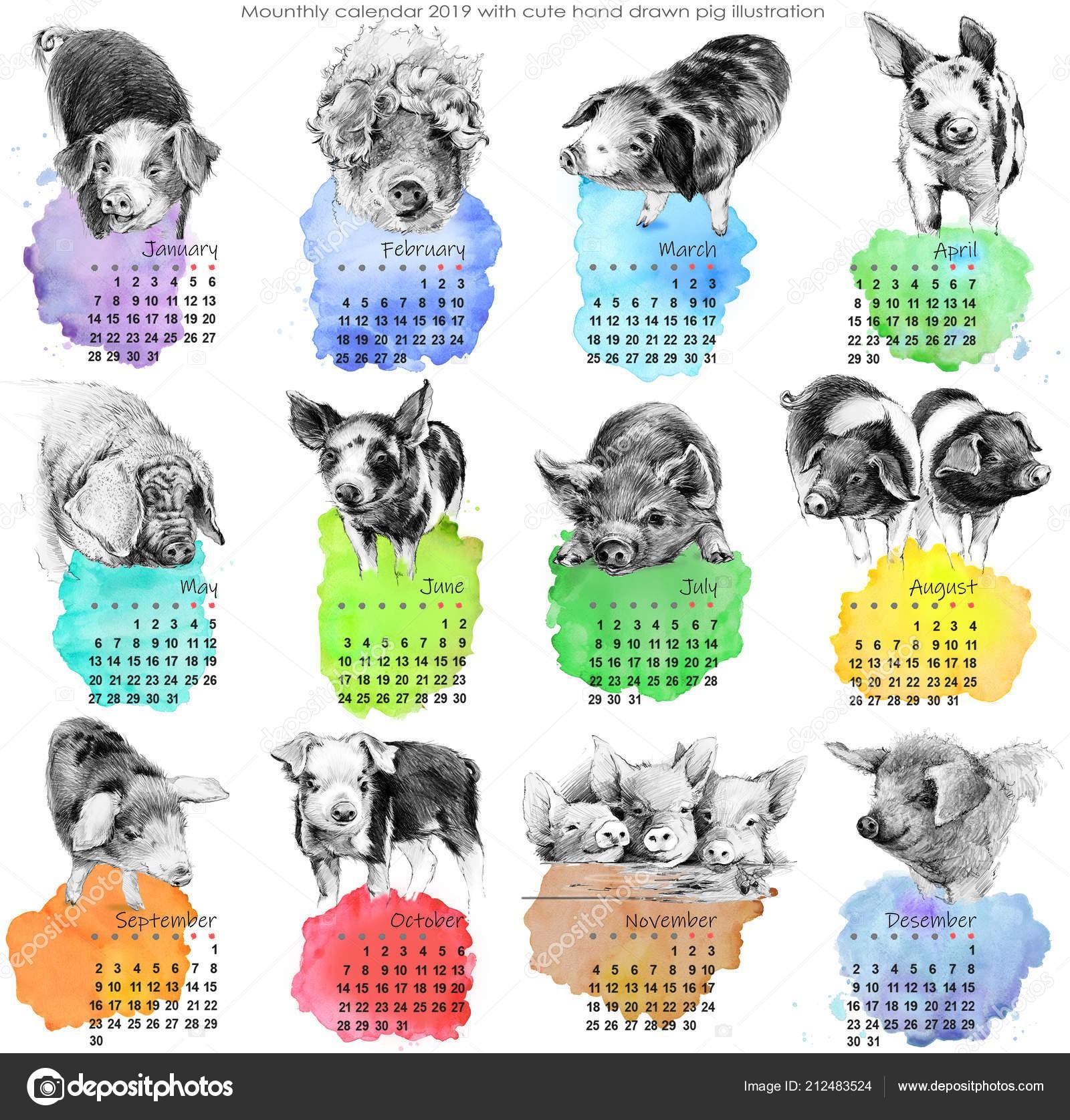 Calendario Imprimir Fevereiro 2019 Más Recientemente Liberado Calendário 2019 Bonito Calendário Mensal Ilustra§£o Porcos