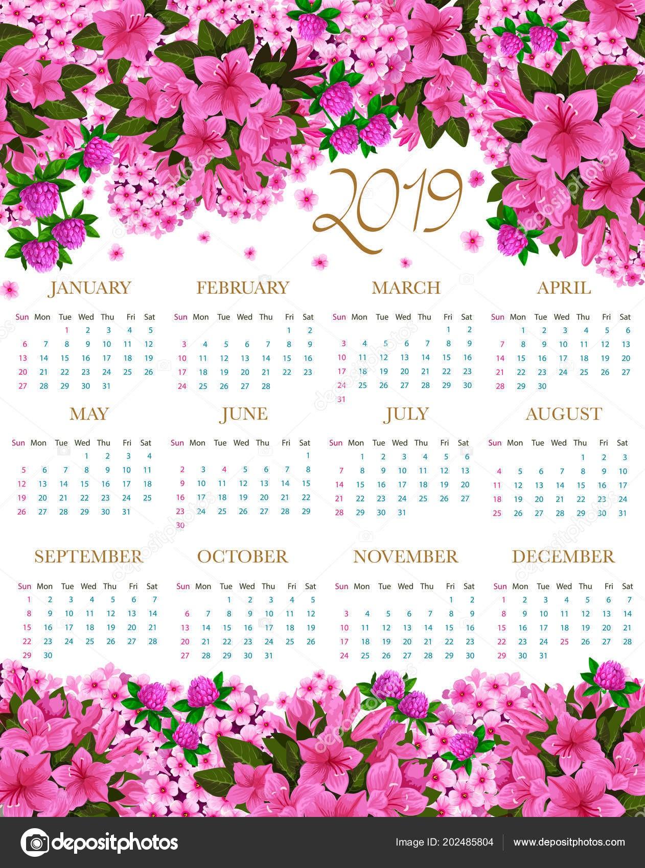 Vektorové květinov½ design kvetouc zahrada růž a vzkvétat květy ibiÅ¡ku nebo jetel a Å¡afrán pro květnaté 2019 měsÄnho kalendáře — Vektor od