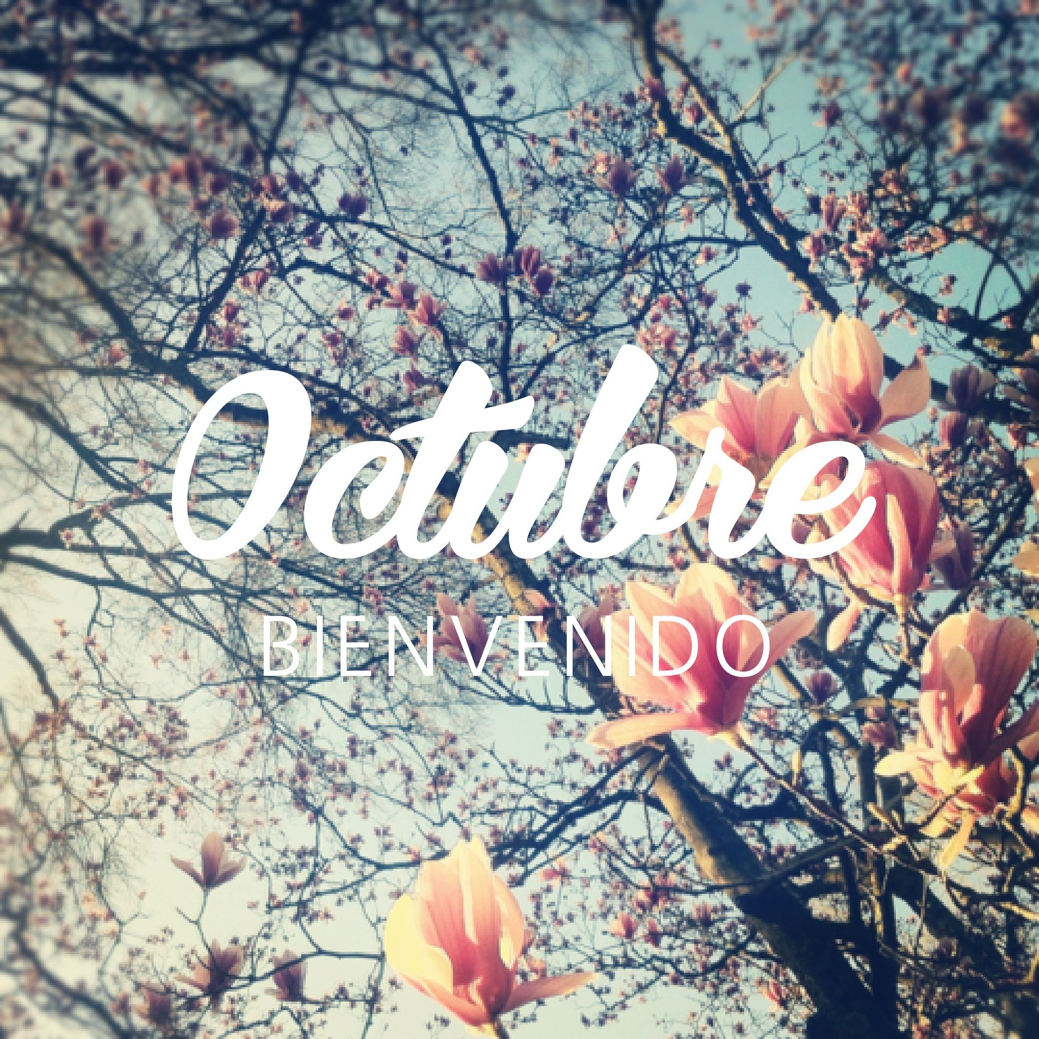 Hola Octubre Hola hola Hello favorite month Birthday soon Monat