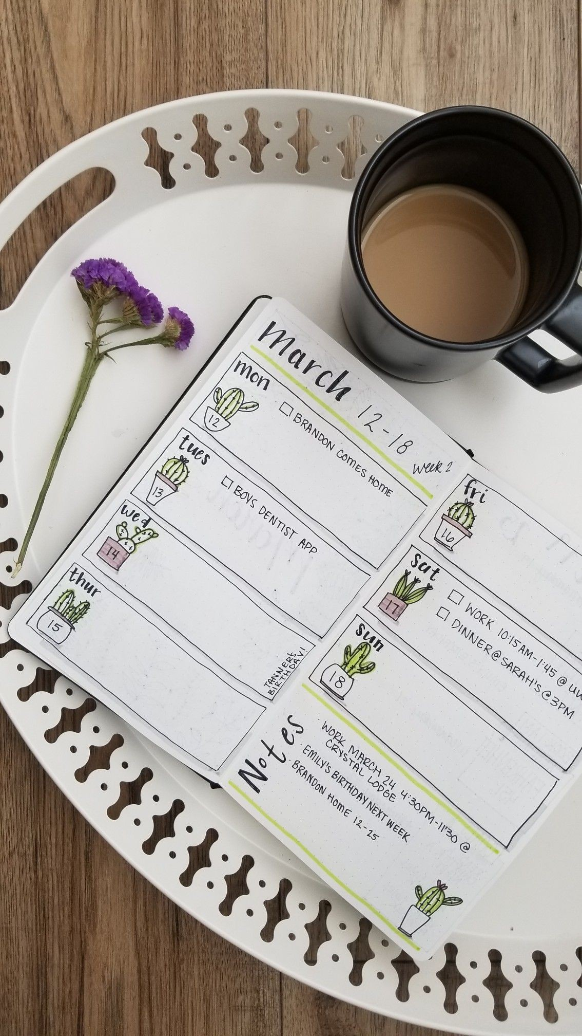 My March spread inspired by Amanda rachlee cactus weeklyspread march bujo bulletjournal planner